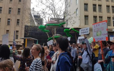 Students Strike Again!