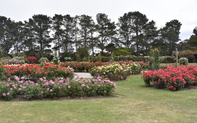 Werribee Mansion, Rose Garden and Zoo